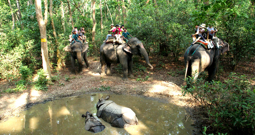 Chitwan Jungle Safari, Chitwan Jungle Safari Tour Package for 3 days
