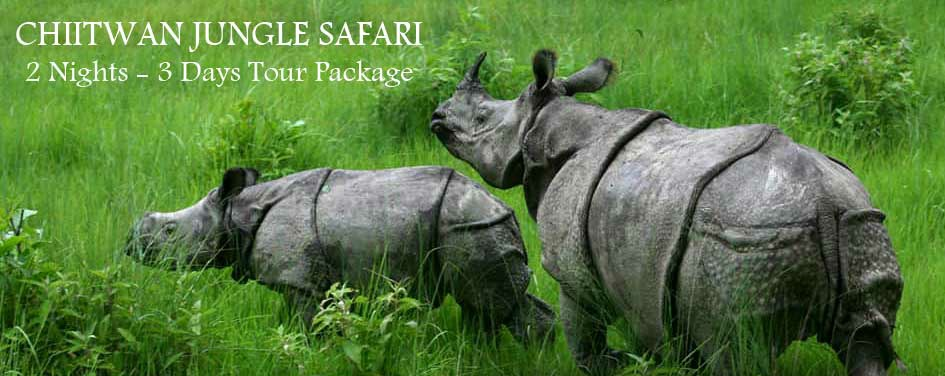 Chitwan Safari Package